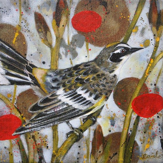Catherine Earle, Yellow Crowned Wood Warbler 2012, acrylic on canvas