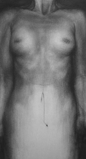 Elaine Green, Trial Specimen 2006, charcoal on rives bfk