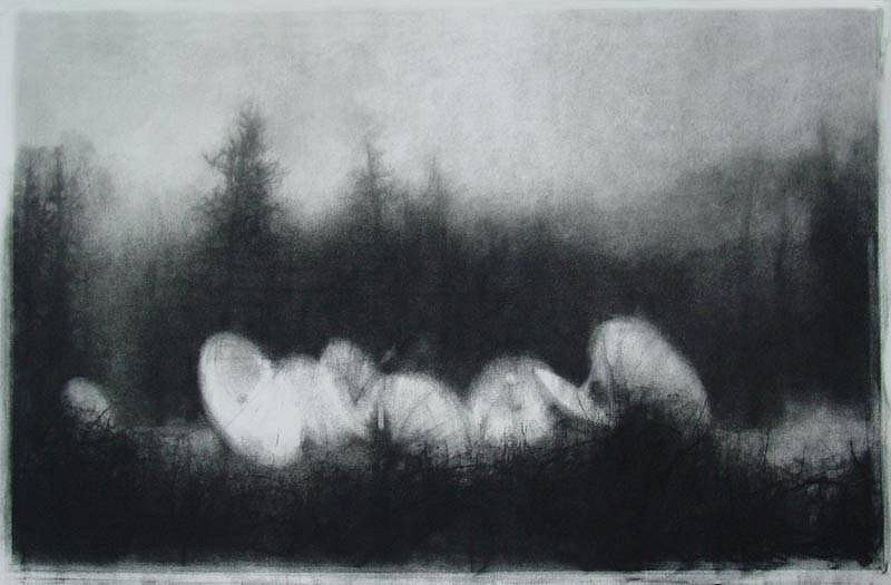 Elaine Green, Through Brambles 2009, charcoal on paper