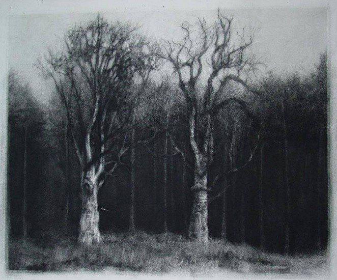 Elaine Green, Couple in the Clearing 2009, charcoal on paper