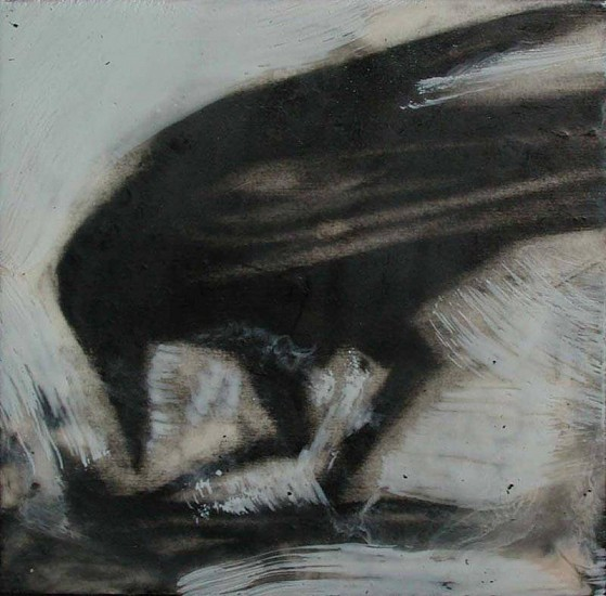 Katherine Nelson, Scavenging Raven 2005, charcoal with encaustic wax