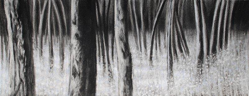 Katherine Nelson, Deep Blue Bells 2009, charcoal & pastel