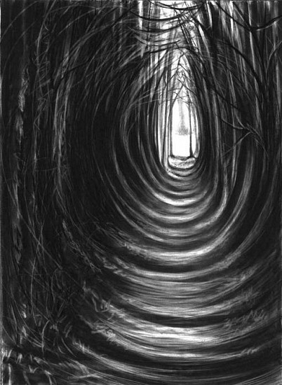 Katherine Nelson, Hole in the Forest 2009, charcoal