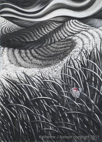 Katherine Nelson, Eightwing's Discovery 2011, charcoal & pastel on paper