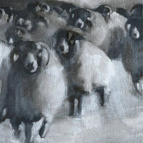 Claudia Pettis, Sheep Run 2009, oil on linen