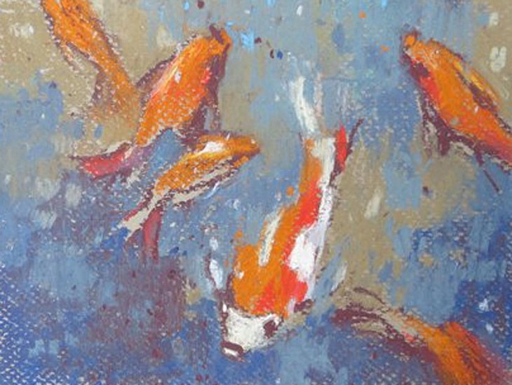Kathy Gale, Moroccan Goldfish 2013, soft pastel on paper