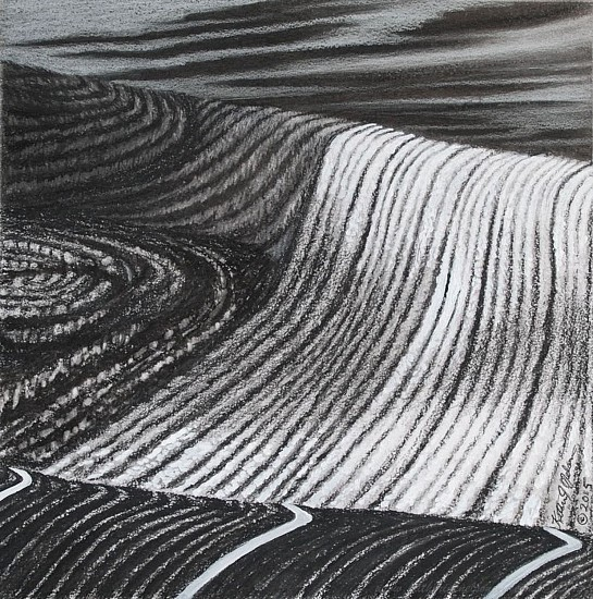 Katherine Nelson, Divided Fields (Canola & Dirt) 2015, Charcol on paper
