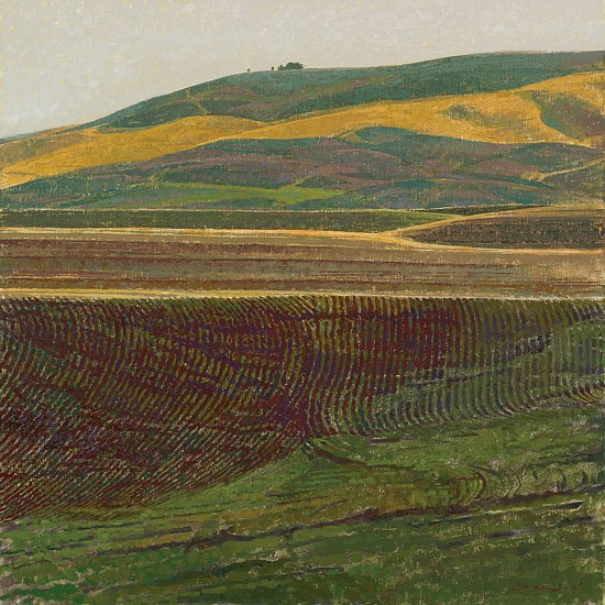 George Carlson, Tilled Patterns of the Earth 2008, oil on linen